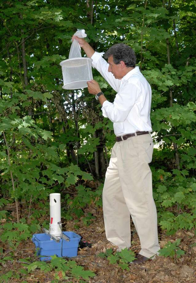 Theodore G. Andreadis, chief medical entomologist and department head of the Connecticut Agricultural Experiment StationâÄôs Center for Vector and Zoonotic diseases, collects mosquitoes from a gravid trap. Photo: Contributed Photo / Connecticut Post Contributed