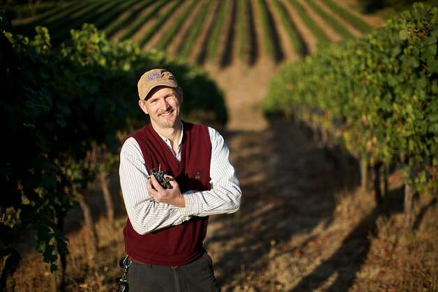 The Eyrie Vineyards, McMinnville, Oregon -- Winemakers, including Jason Lett, are in full harvest and production mode in Western Oregon as the current crop of grapes are the best in the past  few growing seasons. Photo: Bruce Ely, Special To The Chronicle