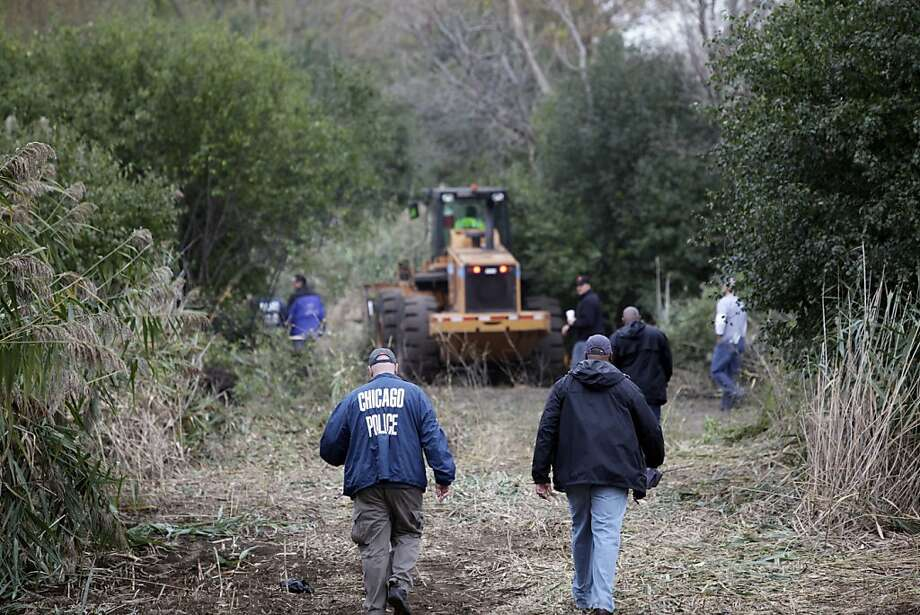 Authorities chop down the 8- to 10-foot tall marijuana plants that were discovered by a police officer and sheriff's deputy in a helicopter. The crop was being raised in an area the size of two football fields. Photo: Teresa Crawford, Associated Press