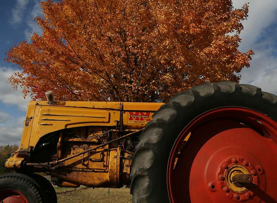 An antique Minneapolis Moline tractor sits outside in front of a similarly colored maple tree near Mosinee, Wis., Friday, October 5, 2012. (AP Photo/The Wausau Daily Herald, Dan Young) NO SALES Photo: Dan Young, Associated Press