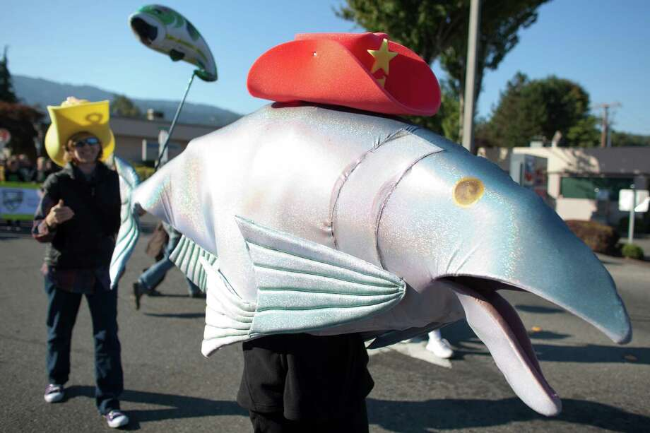 Members of FISH (Friends of the Issaquah Salmon Hatchery) march in the Issaquah Salmon Days Parade on Saturday, October 6, 2012. The annual festival kicks off with a parade and celebrates the return of the salmon to Issaquah Creek. Photo: JOSHUA TRUJILLO / SEATTLEPI.COM