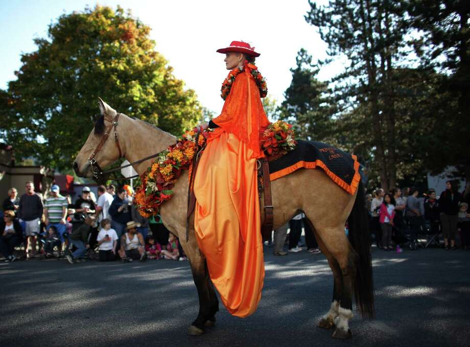The Kau' Lio Pa'u Riders make their way along Front Street during Issaquah Salmon Days on Saturday, October 6, 2012. The annual festival kicks off with a parade and celebrates the return of the salmon to Issaquah Creek. Photo: JOSHUA TRUJILLO / SEATTLEPI.COM