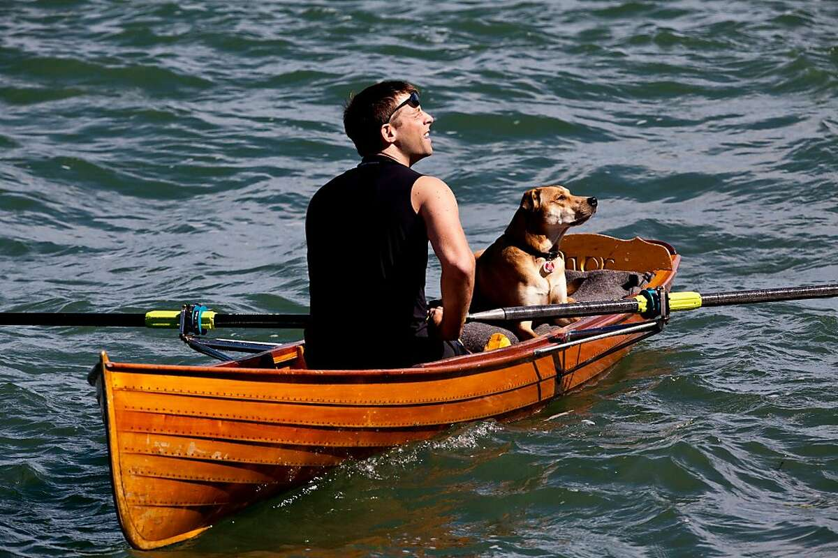 Neil Mueller, with his dog, Tenzing, watches an F-86 Sabre perform from his canoe during the Fleet Week Air Show in San Francisco Bay Saturday, October 6, 2012.
