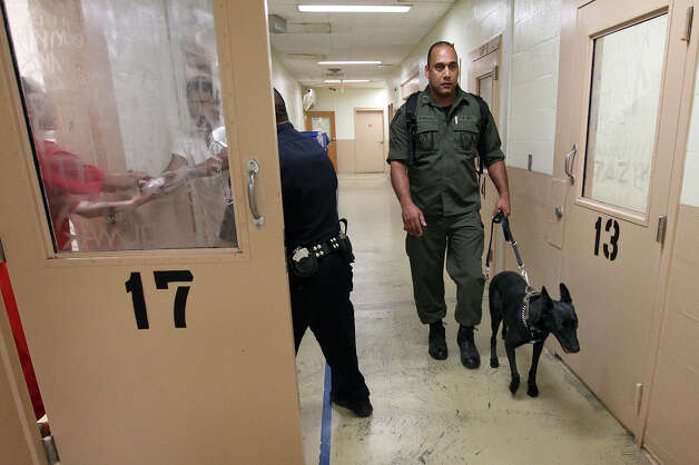 Bexar Country Sheriffs Department Corporal Robert Rodriguez walks with his K-9, Moka, near the intake area as part of his duties at the Bexar County Jail on Thursday, Oct. 4, 2012. Photo: Kin Man Hui, SAN ANTONIO EXPRESS-NEWS / ©2012 San Antonio Express-News