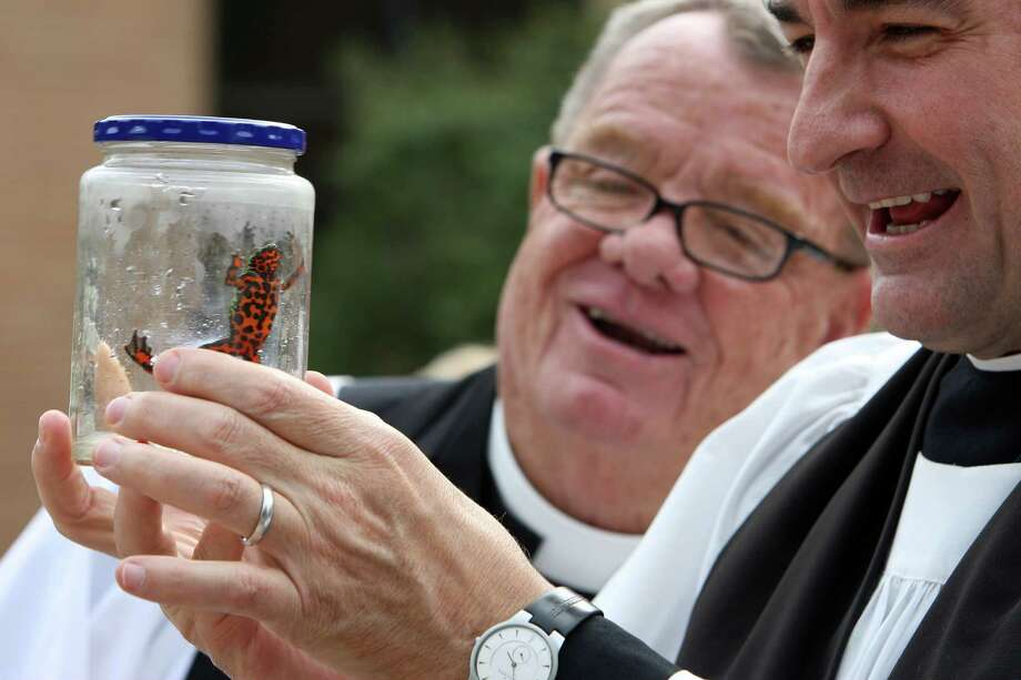 Father Dick Elwood left, and Rev. Stuart Bates admire a Fire Belly Toad named Happy Football owned by three-year-old Aidan Logan during the Blessing of the Animals at St. Francis Episcopal Church  Sunday, Oct. 7, 2012, in Houston. Photo: James Nielsen, Chronicle / © Houston Chronicle 2012