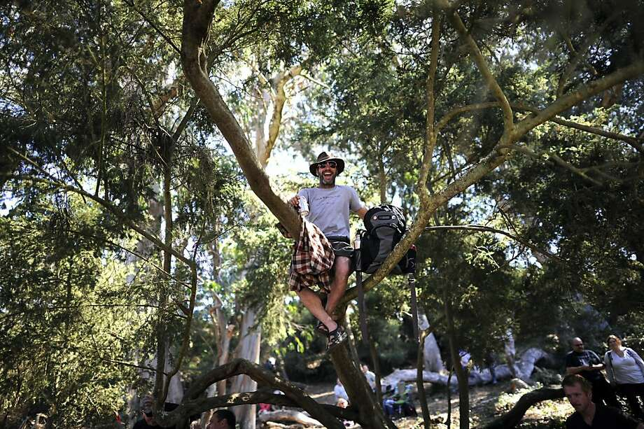 Russell Freeman, who hitchhiked from Alto, CA, sits in a tree for a better view of Justin Townes Earl's set.  Hardly Strictly Bluegrass festival in Golden Gate Park in San Francisco, CA Friday October 6th, 2012. Photo: Michael Short, Special To The Chronicle