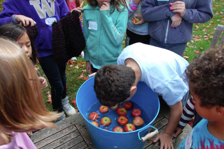 The best technique when bobbing for apples, one young contestant advised, is to try to grasp the stem with your teeth. Photo: Contributed Photo, Contributed Photo/Jarret Liotta / Westport News contributed