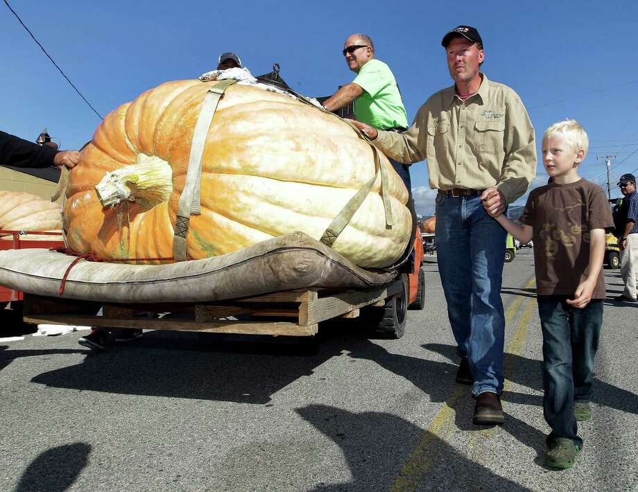Thad Starr, from Pleasant Hill, Ore., moves his pumpkin for the weigh-in with his son Derek, 7, at the Half Moon Bay Pumpkin Festival Weigh-off contest in Half Moon Bay, Calif., Monday, Oct. 8, 2012. The pumpkin weighed 1,775 pounds, making it a new California record. Starr wins six dollars for each pound, which equals $10,650. (AP Photo/Tony Avelar) Photo: Tony Avelar, Associated Press / FR155217 AP