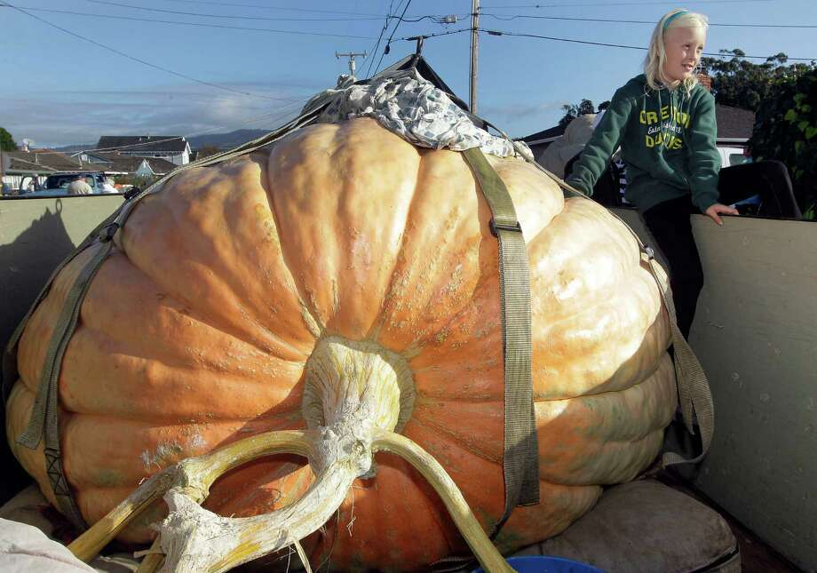 Danika Starr, 9, sits with her father's winning pumpkin at the Half Moon Bay Pumpkin Festival Weigh-off contest in Half Moon Bay, Calif., Monday, Oct. 8, 2012. The pumpkin weighed 1,775 pounds, making it a new California record. Starr wins six dollars for each pound, which equals $10,650. (AP Photo/Tony Avelar) Photo: Tony Avelar, Associated Press / FR155217 AP