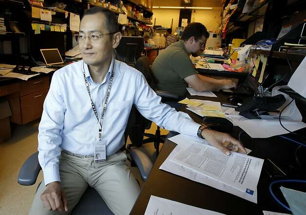 Shinya Yamanaka sits in his Gladstone Institute laboratory. Shinya Yamanaka, a scientist who works part-time out of the Gladstone Institute in San Francisco, Calif., is the inventor of IPS (induce pluripotent stem cells) stem cells. Photo: Brant Ward, The Chronicle