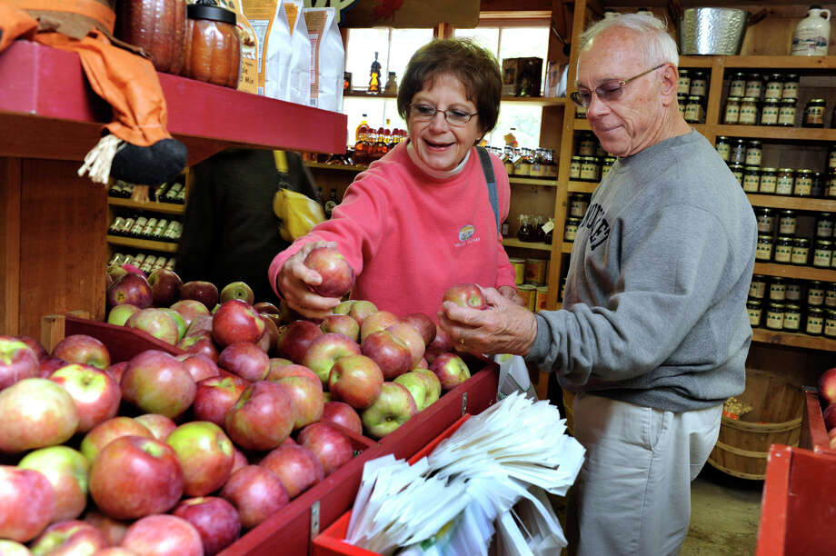 Joanne Blum-Carnevale and Ben Carnevale, formerly longtime Bethel residents, buy apples at Blue Jay Orchards in Bethel Tuesday, Oct. 9, 2012. Photo: Carol Kaliff