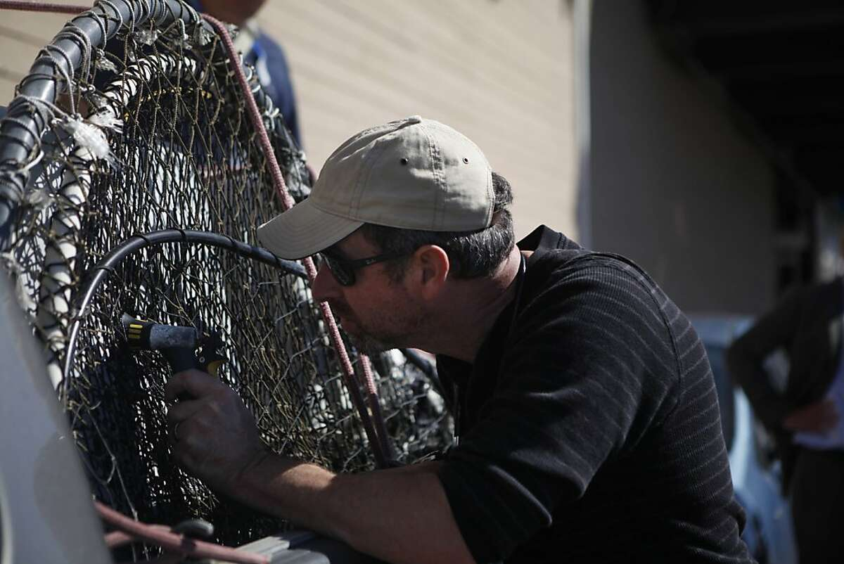 Bill Van Bonn, director of veterinary science Marine Mammal Center, prepares to spray some water into a crate carrying a sealion that was rescued at Pier 39 after it was seen entangled in debris on Tuesday, October 9, 2012 in San Francisco, Calif.