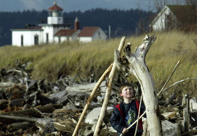 Can I legally take wood or other items from Seattle parks? Photo: Seattlepi.com File