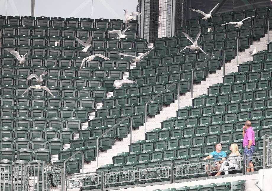 Is anybody out there? Especially by the end of the season, Mariners fans might have noticed how empty the stands often were at Safeco Field. The largest crowd in 2012 was on April 13 for the home opener, when the M's had a paid attendance of 46,026. The smallest Safeco crowd of the year was just five days later on April 18, when there were just 11,343 ticket holders -- though, obviously, not everyone with a ticket actually showed up to every game this season. Photo: Otto Greule Jr, Getty Images / 2012 Getty Images
