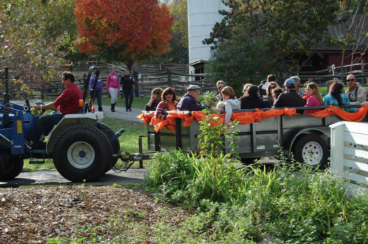 The Stamford Museum & Nature Center celebrates the changing seasons this weekend with two events: Octoberfest on Friday, Oct. 19 and Harvest Festival Weekend on Saturday and Sunday, Oct. 20 and 21.