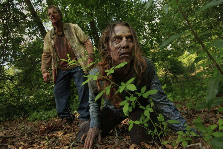 The woods aren't a safe hiding place for zombies.  Photo: Carolyn Cole, McClatchy-Tribune News Service / Los Angeles Times