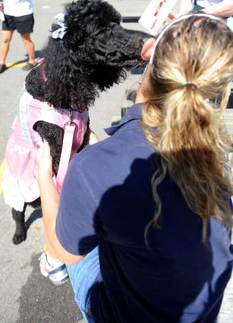 Trixie, winner of the Best Dressed Dog contest, kisses her owner Scarlett Hebb during Dogtoberfest downtown Beaumont, Saturday. Tammy McKinley/The Enterprise Photo: TAMMY MCKINLEY, MBR / Beaumont