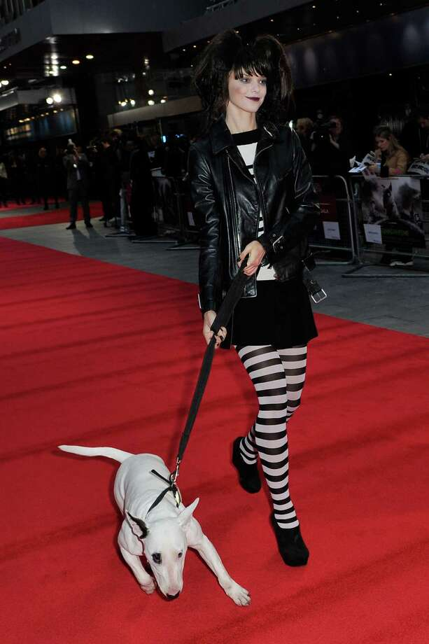 A model wearing Frankenweenie inspired fashion dressed by Joseph walks the red carpet with  Sparky at the opening night film of the 56th BFI London Film Festival 'Frankenweenie 3D' at Odeon Leicester Square on Wednesday in London.  (Photo by Gareth Cattermole/Getty Images for BFI) Photo: Gareth Cattermole, Ap/getty / 2012 Getty Images