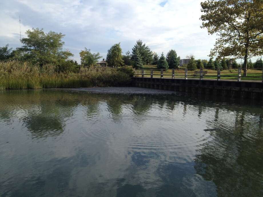 Untreated, raw sewage fouls the water in Stamford. The spill happened on Friday, Oct. 12, 2012. Photo: The Advocate