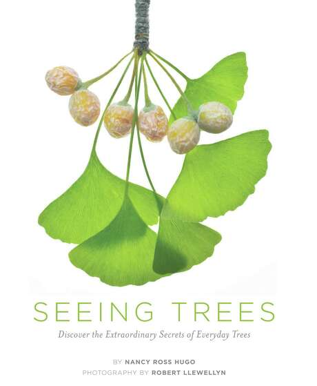 """Seeing Trees""  helps you view trees for the little things that make them special. (Timber Press/MCT) Photo: Handout, MBR"