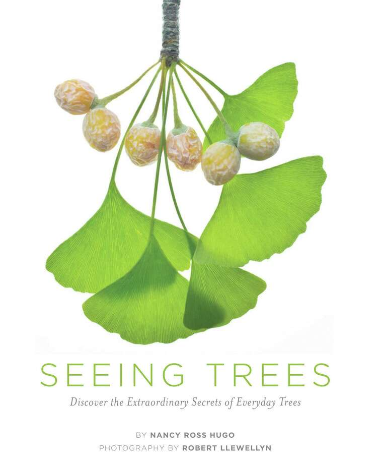 """""""Seeing Trees""""  helps you view trees for the little things that make them special. (Timber Press/MCT) Photo: Handout, MBR"""