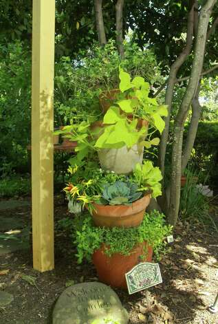 The tower of potted herbs is created by Pam Harris. Photo: Gary Fountain / Copyright 2012 Gary Fountain.