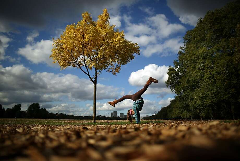 A tourist limbers up with handstand under a golden tree in London's Hyde Park. Photo: Peter Macdiarmid, Getty Images