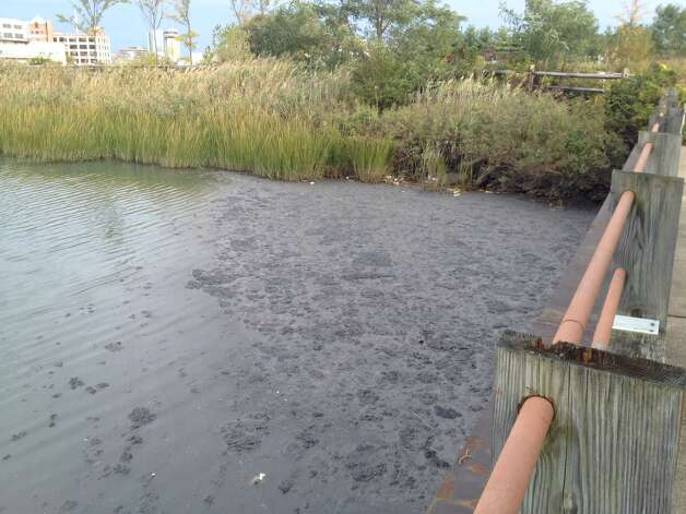 Untreated, raw sewage fouls the water in Stamford. The spill happened on Friday, Oct. 12, 2012. The spill appears too large to contain and when the tide turns  the floating, stinking mounds of effluent will be swept into the Sound. Photo: The Advocate