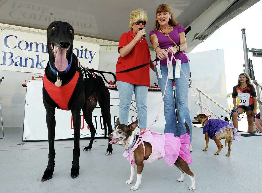 Owners show what their dogs are made of in the dog style show at Dogtoberfest on Saturday, October 13, 2012 at the Giant Fire Hydrant at the Fire Museum in downtown Beaumont. Photo taken: Randy Edwards/The Enterprise Photo: Randy Edwards