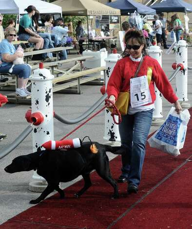 Owners show what their dogs are made of in the Strut Your Mutt parade at Dogtoberfest on Saturday, October 13, 2012 at the Giant Fire Hydrant at the Fire Museum in downtown Beaumont. Photo taken: Randy Edwards/The Enterprise