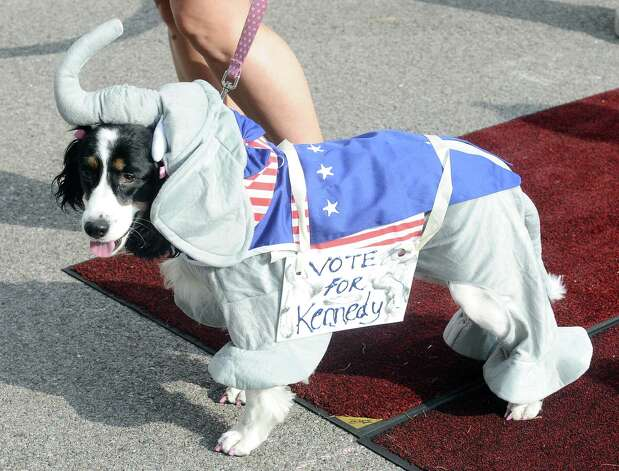 Owners show what their dogs are made of in the Strut Your Mutt parade at Dogtoberfest on Saturday, October 13, 2012 at the Giant Fire Hydrant at the Fire Museum in downtown Beaumont. Photo taken: Randy Edwards/The Enterprise Photo: Randy Edwards