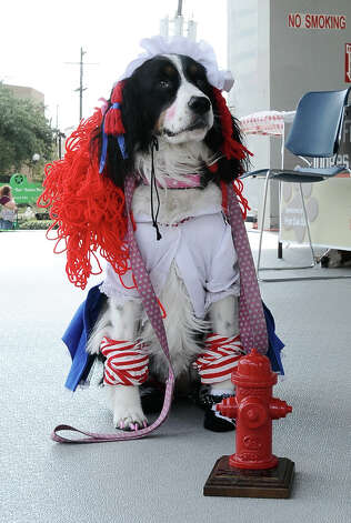 Kennedy dressed as Raggedy Ann wins best dressed at Dogtoberfest on Saturday, October 13, 2012 at the Giant Fire Hydrant at the Fire Museum in downtown Beaumont. Photo taken: Randy Edwards/The Enterprise Photo: Randy Edwards