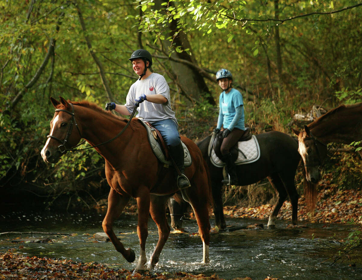 Take a horse out on the trails or even get riding lessons together at Spruce Farm. Experienced riders can head to Mead Farm in Stamford for trail riding through Stamford and Greenwich.
