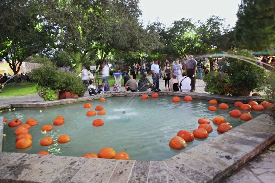 San Antonio Botanical Garden's fall party Gardens by Moonlight featured food and music Saturday, Oct. 13, 2012. Photo: Xelina Flores-Chasnoff