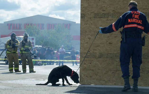 State Trooper Paul G. Makuc employs a dog to sniff for possible accelerant at the scene of a mock fire during New Milford fire prevention day. Sept. 30, 2012. Photo: Trish Haldin