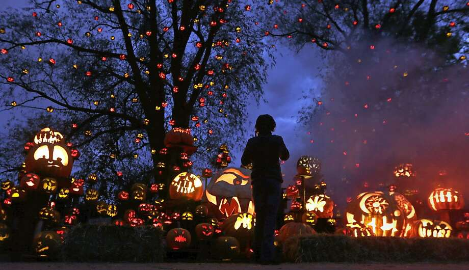 While surrounded by hundreds of pumpkins, a girl stops to look at the illuminating jack o' lanterns at the Roger Williams Park Zoo in Providence, R.I., Monday, Oct. 8, 2012. Some 5,000 carved pumpkins are on display for this yearís Jack-oí-lantern Spectacular, one of the nationís largest jack-oí-lantern shows. (AP Photo/Charles Krupa) Photo: Charles Krupa, Associated Press