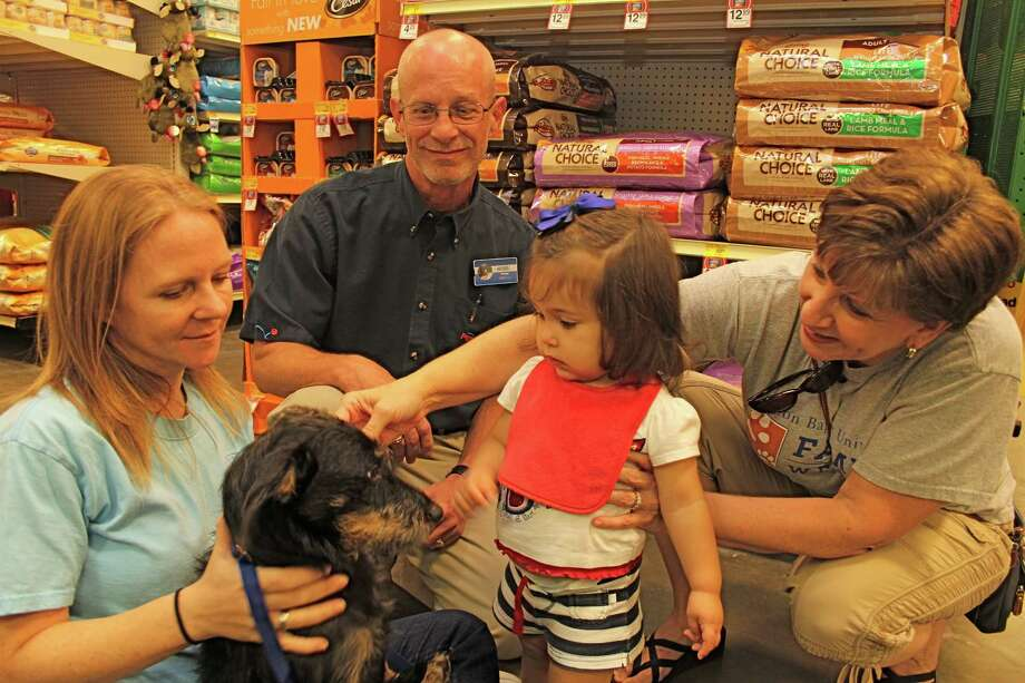 Laura Winters, Sugar Land Animal Services volunteer, holds Dahlia, a schnauzer mix, for Natalie Miller, 14 months, of Houston. With them are Ross Nolan, Petsmart store manager, and Natalie's grandmother, Joyce Miller. The Sept. 15 program was organized by Sugar Land Animal Services, which also is involved in the Nov. 3 Hunting for Homes. Photo: Suzanne Rehak