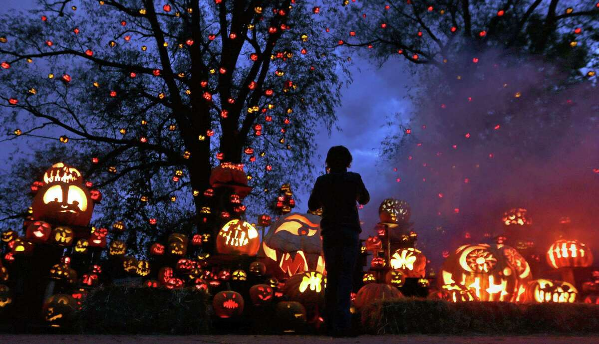While surrounded by hundreds of pumpkins, a girl stops to look at the illuminating jack o' lanterns at the Roger Williams Park Zoo in Providence, R.I., Monday, Oct. 8, 2012. Some 5,000 carved pumpkins are on display for this yearís Jack-oí-lantern Spectacular, one of the nationís largest jack-oí-lantern shows. (AP Photo/Charles Krupa)
