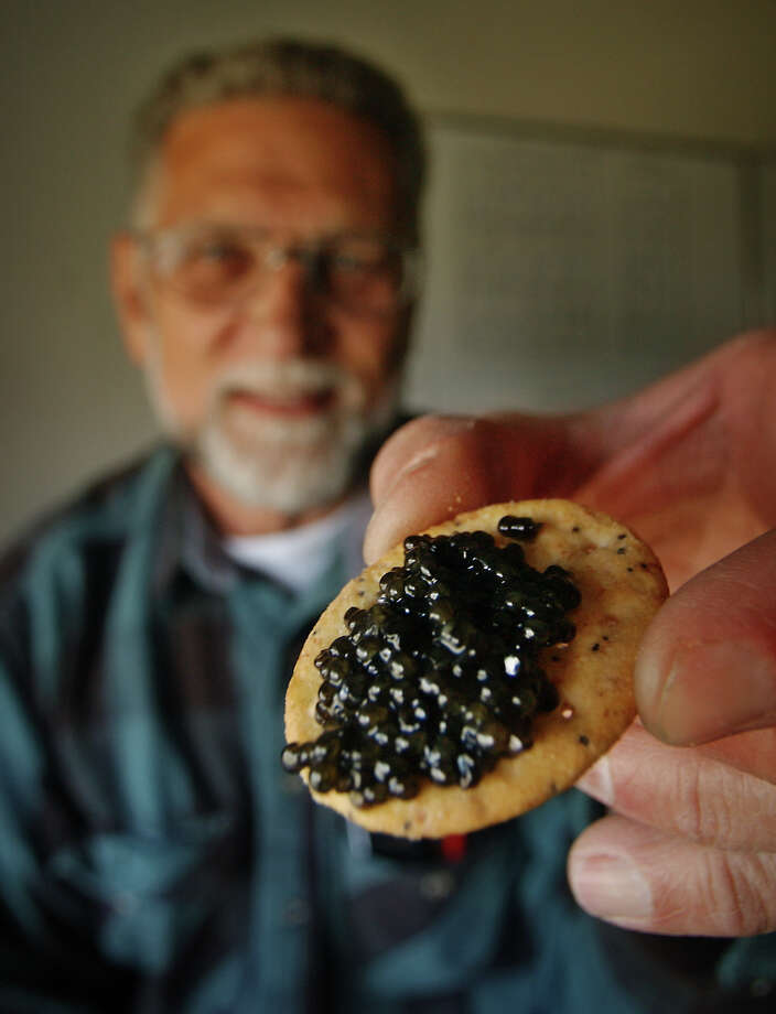 $300,000: Coburn says with much of America struggling to put food on the table, Leo Ray's (pictured) project in Idaho to produce American caviar, is just a fishy idea. AP Photo/Troy Maben Photo: TROY MABEN, . / AP