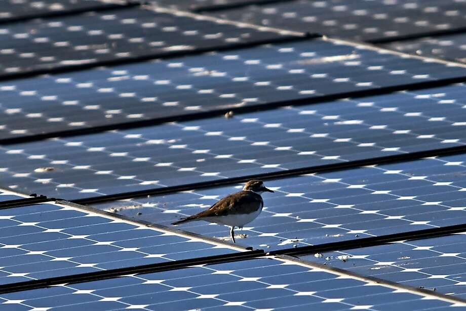 SunPower, a San Jose company that makes solar panels, is slashing production and staff at a manufacturing plant in the Philippines. Photo: Chip Chipman, Bloomberg