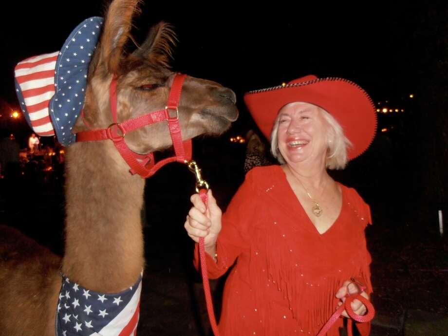 Jane Macon, owner of Alamo Miniatures, ushers one of her favorite llamas through the Game Dinner. Photo: San Antonio Express-News