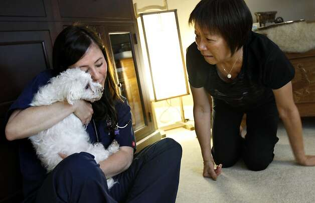 "Sandy Wong, right, worries about her dog Claire as she is comforted by Dr. Shea Cox during a home pet hospice visit in Oakland.  Claire belongs to Wong and Jeff Aoki, who just went through the hospice process with their other dog.  Claire has a tumor on her head, and they want her last days to be as comfortable as possible.  ""We're going to make every day special,"" Sandy said. Photo: Sarah Rice, Special To The Chronicle"
