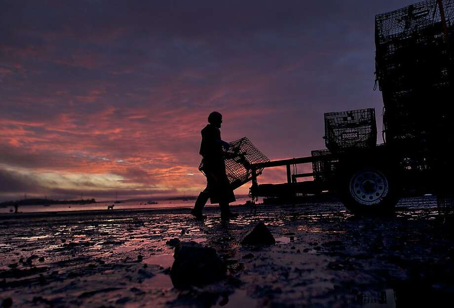 A new day dawns as the season comes to a close for lobsterman Norman Haynes, 69, loading traps onto a trailer, Friday, Oct. 19, 2012, in Falmouth, Maine. A glut of early season lobsters resulted in low prices for the fishermen, making it was one of the most disappointing seasons on record. (AP Photo/Robert F. Bukaty) Photo: Robert F. Bukaty, Associated Press