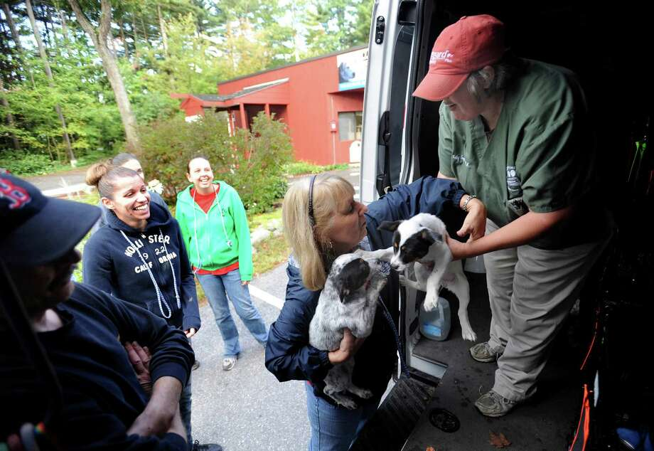 Veterinarian Kathy Caughlin (right) hands puppies to Ginny Robinson at the Humane Society for Greater Nashua, N.H., after a trip of more than 2,000 miles from San Antonio on Monday, Oct. 1, 2012. More than 40 dogs, many of which were rescued from euthanization, made the trip and will be put up for adoption. Photo: Billy Calzada, San Antonio Express-News / © San Antonio Express-News