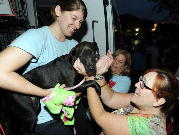 Teri Martinez says goodbye to the puppy that she has fostered for three weeks as Virginia Davidson holds the dog before loading it into  a van for a trip to New Hampshire on Sept. 29, 2012. The dogs were transported from San Antonio to the Humane Society for Greater Nashua to be adopted. Photo: Billy Calzada, San Antonio Express-News / © San Antonio Express-News