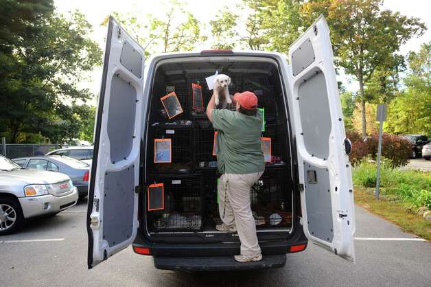 Veterinarian Kathy Caughlin unloads a dog from its carrier at the Humane Society for Greater Nashua, N.H., after a trip of more than 2,000 miles from San Antonio on Monday, Oct. 1, 2012. More than 40 dogs, many of which were rescued from euthanization, made the trip and will be put up for adoption. Photo: Billy Calzada, San Antonio Express-News / © San Antonio Express-News