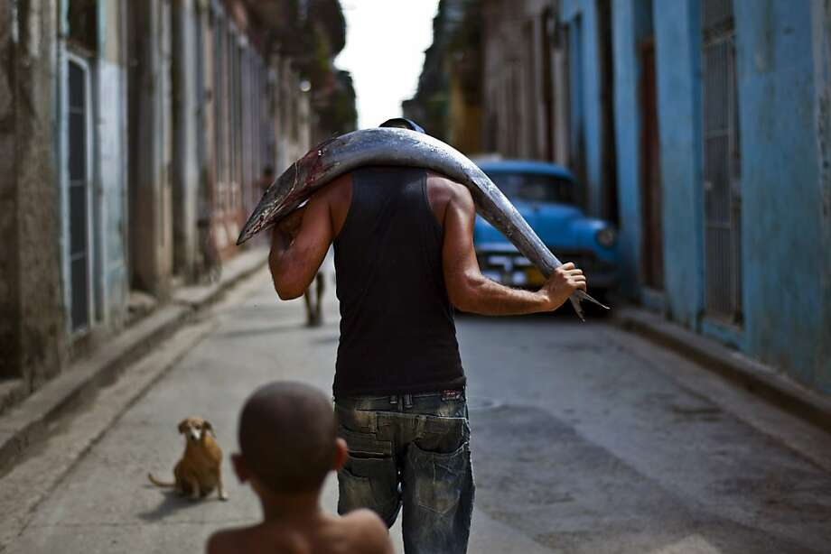 A man carries a freshly caught fish on his back to sell in Old Havana, Cuba, Saturday, Oct. 20, 2012.  On Sunday, Cubans will cast ballots to choose among candidates for municipal assemblies that administer local governments and relay complaints on issues such as potholes and housing, social and sports programs. (AP Photo/Ramon Espinosa) Photo: Ramon Espinosa, Associated Press