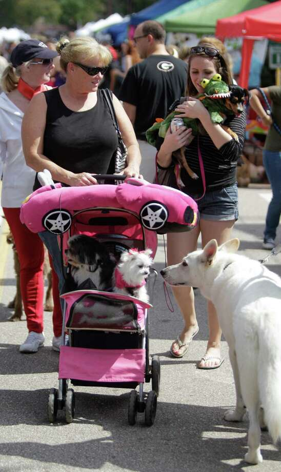 Sarah Baumbach of Spring pushes her dogs Mason, left, and Lexie, right, in a pet stroller during Pet Fest in Old Town Spring Sunday, Oct. 21, 2012, in Spring. Photo: Melissa Phillip, Houston Chronicle / © 2012 Houston Chronicle
