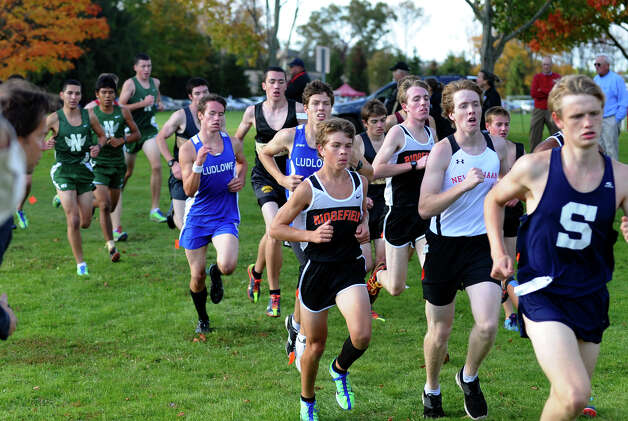 Boys FCIAC cross country action at Wavenly Park in New Canaan, Conn. on Thursday October 18, 2012. Photo: Christian Abraham / Connecticut Post