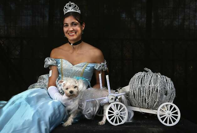 After midnight, Mickey the three-legged dog/carriage turns back into a pumpkin. Photo: John Moore, Getty Images